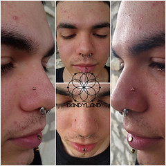Paired High Nostril Piercings