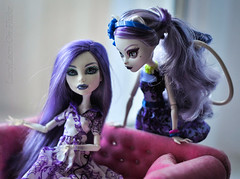 Cheshire cat Catrine (7) (lucylacri) Tags: monster cat high cheshire violet lavender bloom gloom catrine demew