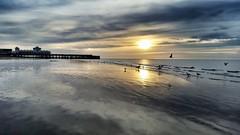morning sea sky sun seagulls reflection beach birds... (Photo: Mark.L.Sutherland on Flickr)