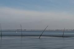 Bassin d'Arcachon 01 (Lionel STD) Tags: ocean mer france pose bassin longue gironde d90 darcachon lionel33