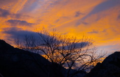 Silhouette (rasdiggity) Tags: sunset sky mountains tree clouds mexico branches huasteca lahuasteca nuevolen russellsticklor rasdiggity