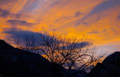 Silhouette (rasdiggity) Tags: sunset sky mountains tree clouds mexico branches huasteca lahuasteca nuevoleón russellsticklor rasdiggity