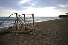 tronchi (ettore1981) Tags: wood winter sunset italy marina italia tramonto mare tuscany di luci toscana inverno lungomare grosseto legno maremma alberese