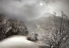 Ireber (arbioi) Tags: nieve euskalherria navarra nafarroa gr12 arraras basaburua arrarats