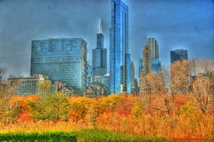 Chicago in the fall (Anton Shomali - Thank you for over 3 million views) Tags: city blue trees red sky orange usa lake chicago color green tower fall nature colors grass buildings season drive us october colorful flickr downtown searstower sony bluesky shore lakeshore tall colourful hdr willis bigcity tallbuildings fallseason chicagointhefall willistower dslra850
