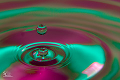 Splash of colour (stuartlawrencephotography) Tags: pink green home water digital canon photography cool vibrant ripple flash bored h2o droplet athome colourful splash dslr beginner remoteshutter 600d beginnerphotography