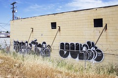STAE ONE - YUNK (Chasing Paint) Tags: graffiti al otr graff orangecounty oc gsb yunk 714 dms stae ocgraff ocgraffiti