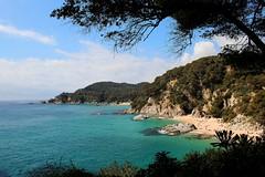 Litoral de LLoret de Mar (Albert T M) Tags: catalunya costabrava lloretdemar laselva mediterrani platgescatalunya