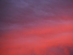 Sunset at home. (peachy92) Tags: chatham chathamcountygeorgia savannah sunset sky cloud dusk chathamcountyga clouds chathamcounty skies 2015 fujifilmfinepixxp200 ga georgia us usa unitedstates unitedstatesofamerica savannahga savannahgeorgia