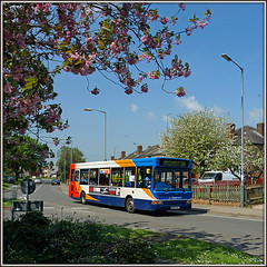 34626, Lower Hillmorton (Jason 87030) Tags: camera trees hot shot blossom rugby may picture sunny fave views dennis amateur dart warwickshire stagecoach 2016 34626 lowerhillmorton