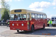 DSC_9724 (N gauge fan) Tags: bus dennis hc brooklands lancet yyb118