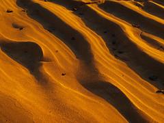 sands (tugboat1952) Tags: abstract sunrise river sand ripples minnamurra tugboat1952
