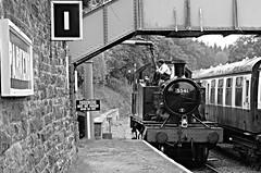 L2016_2296  - Dean Forest Railway  - Gloucestershire (www.jhluxton.com - John H. Luxton Photography) Tags: leica uk england gloucestershire forestofdean gwr lms greatwesternrailway deanforestrailway heritagerailway londonmidlandscottishrailway severnwyerailway parkendstation johnhluxtonphotography
