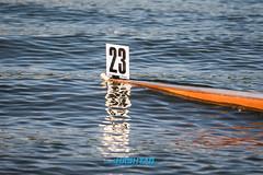 Veslárska regata o pohár SNP-132