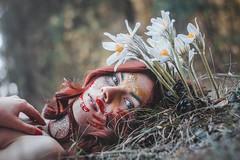Snowdrops (alextroshenkov) Tags: world travel color art colors face grass canon spring russia picture siberia snowdrops barnaul 60d