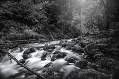 Ravenna Wasserfall (Radek Lokos Fotografie) Tags: white black canon eos mono waterfall reisen wasserfall outdoor freiburg landschaft weiss schwarz ravenna 6d radeklokosfotografie