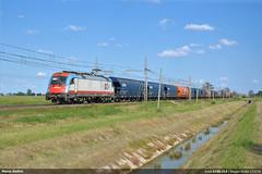 Inrail E190.313 (Marco Stellini) Tags: italia siemens taurus treno privata ferroviaria impresa cereali e190 tramogge fuorimuro inrail