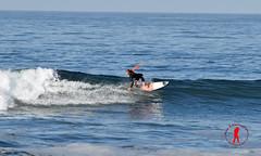 DSC_0047 (Ron Z Photography) Tags: surf surfer huntington surfing huntingtonbeach hb surfin surfsup huntingtonbeachpier surfcity surfergirl surfergirls surfcityusa hbpier ronzphotography