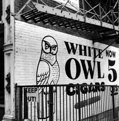 white owl cigars (Nickademus42) Tags: 500cm hasselblad georgetown kentucky 6x6 square medium format 120 80mm black white film photography project podcast owl cigars 5cents