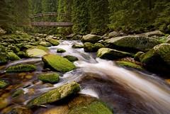 (andrea.dusk) Tags: bridge nature forest river nikon long exposure czech stones tokina sumava umava vydra 1116mm