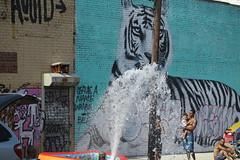 IMG_4354 (Mud Boy) Tags: nyc newyork brooklyn bushwick summer streetscene hydrant graffiti firehydrant streetart