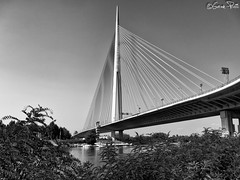 Ada bridge (goran_protic) Tags: adabrige adamost bridge bw blackandwhite blackwhite mono monochrome river sava ada lake pilon architecture lines belgrade serbia srbija beograd