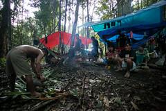 Guilherme.Gnipper-0322 (guilherme gnipper) Tags: picodaneblina yaripo yanomami expedio expedition cume montanha mountain wild rainforest amazonas amazonia amazon brazil indigenous indigena people