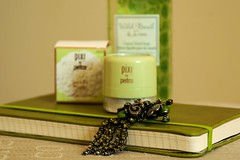 67/365   Green (hyacinth50) Tags: stilllife green vintage brooch journal powder 365 cy365