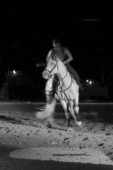 emerging from the dark (i.v.a.n.k.a) Tags: horses white black shadows stuttgart sony riding alpha ivana gallop appasionata hesova