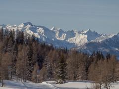 P3089336 (turbok) Tags: berge ennstal hochwildstelle landschaft c kurt krimberger