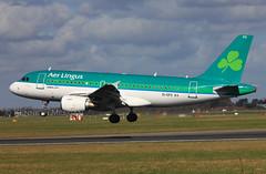 EI-EPS (Ken Meegan) Tags: dublin airbus aerlingus a319 airbusa319 3377 a319111 airbusa319111 eieps 1032015