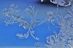 Frost on the window (ory.varzgar) Tags: winter cold nature frost frostywindow