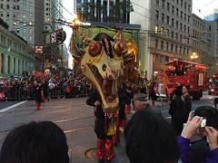 Lunar New Year Parade