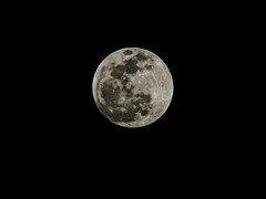 The Moon 4-3-15 7pm (theeqwlzr) Tags: moon night losangeles crazy astrophotography nightsky wtf outerspace canonrebelxti sandimascalifornia