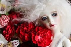Fafner (twinkle_moon_bunny) Tags: flowers kid doll bjd msd fafner souldoll
