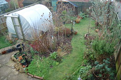 Looking Down on the Back Garden - January 2015 (basswulf) Tags: uk england garden unmodified lenstagged oxford backgarden 32 1855mmf3556g d40 3008x2000 permissions:licence=c image:ratio=32 201501 normcres lookingdownonthegarden 20150122