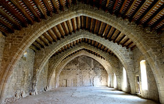 ABADIA DE LAGRASSE - FRANCIA (beagle34) Tags: aude francia lagrasse 171 abadia languedocroselln sonyrx100m3