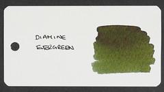 Diamine Evergreen - Word Card