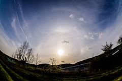 22 Halo, 46 Halo,Sun Dog, Upper Tangent Arc (kurumaebi) Tags: sunset sun nature landscape halo d750 yamaguchi sundog mysky