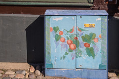 Decorated (Infomastern) Tags: cabinets ystad elskp