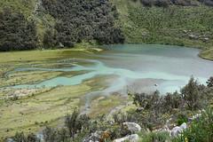 Quebrada Ruripaccha (*Andrea B) Tags: lake peru honda hiking walk january hike glacier blanca valley laguna cordillera huaraz quebrada quebradahonda 2016 cordillerablanca january2016 peruandesguide quebradaruripaccha ruripaccha lagunapaccharuri paccharuri