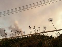 Autumn Invitation (<be>) Tags: autumn sky clouds hill invitation agapanthus