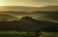 Backlight. (Massetti Fabrizio) Tags: red sun sunlight green rural sunrise belvedere pienza valdorcia sanquirico nikond4s