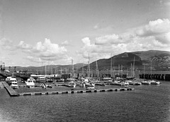 Carlingford Marina, Co. Louth (Frank Milling) Tags: ocean ireland sea sky irish sun mountain film water marina boats boat fuji 200 fujifilm louth carlingford foma ga645 fomapan