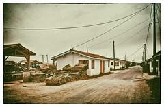 Andernos,  village de pcheurs (Marie Hacene) Tags: france village maisons pcheurs andernoslesbains bassinarcachon