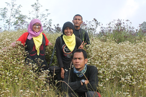 "Pendakian Sakuntala Gunung Argopuro Juni 2014 • <a style=""font-size:0.8em;"" href=""http://www.flickr.com/photos/24767572@N00/27093401171/"" target=""_blank"">View on Flickr</a>"