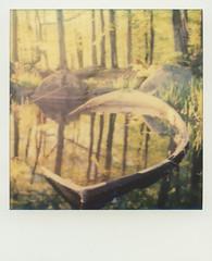 Sunken boat (SX-70) (mmartinsson) Tags: lake green film water polaroid sx70 boat sweden scan sunken 2016 instantfilm analoguephotography polaroidsx70landcamera epsonperfectionv700 impossibleproject tjrnarpssjn