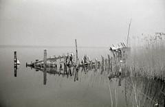 Bodden I (Pepe Lamula) Tags: sea fog scratches baltic