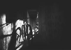 Sunset Bike (Ro Ho) Tags: 29er nature landscape black white sun sunset bw natur landschaft ff sony bike blackandwhite mtb sw a7 alpha7