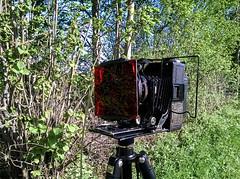 (salparadise666) Tags: analog hannover nils 6x9 region voigtlnder kamera 1920 avus mittelformat volkmer